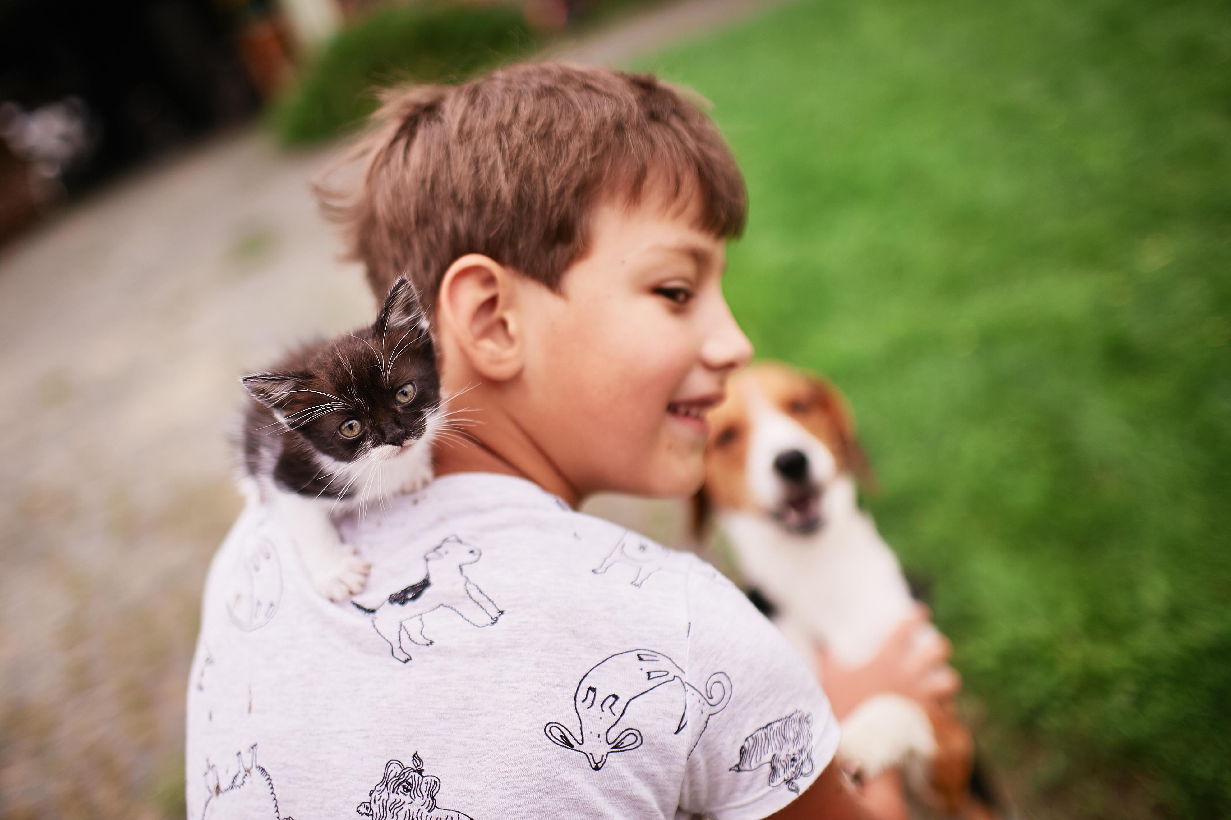Meu amigo Pet: a relação com crianças e idosos