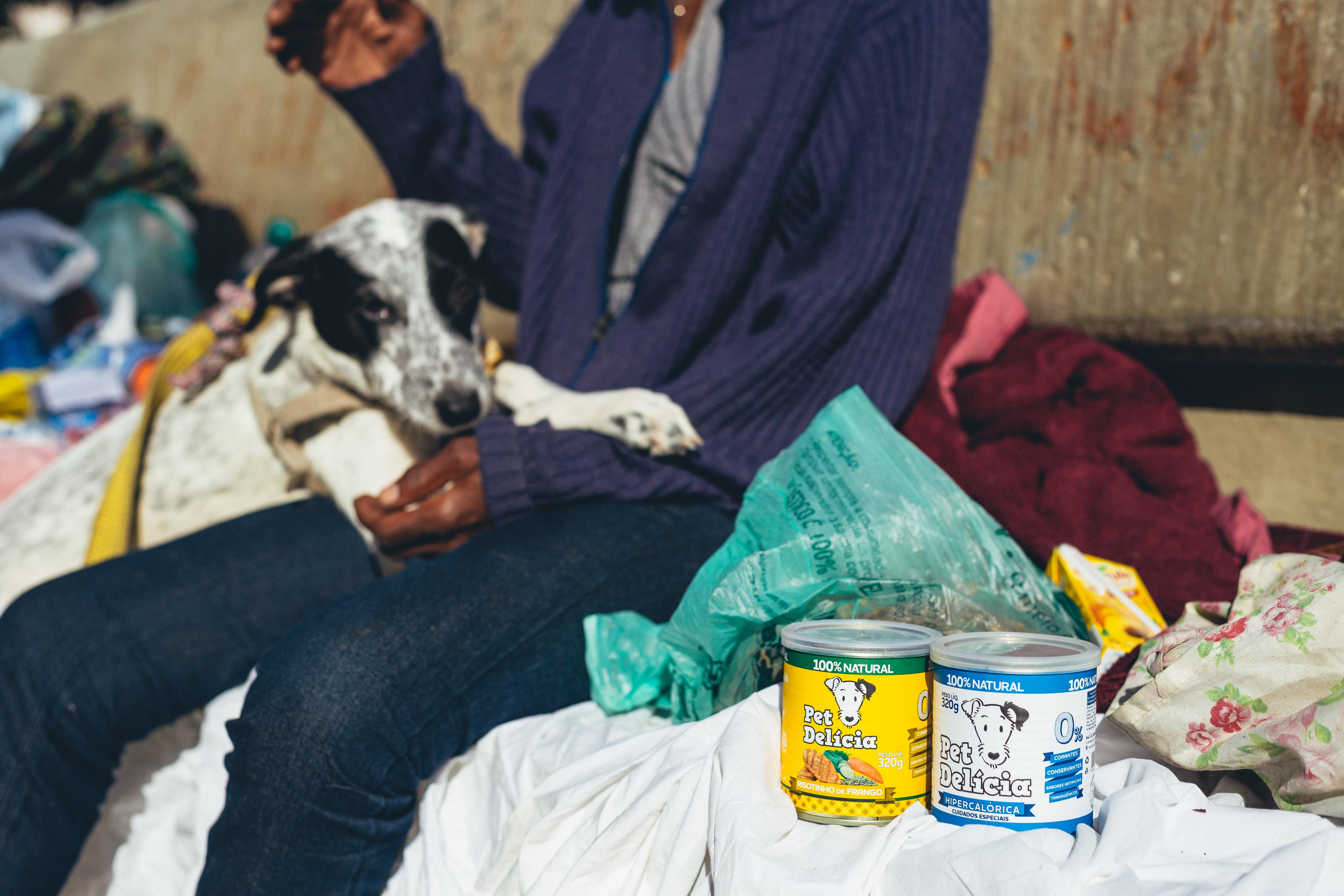 Moradores de Rua e Seus Cães: a ação não para