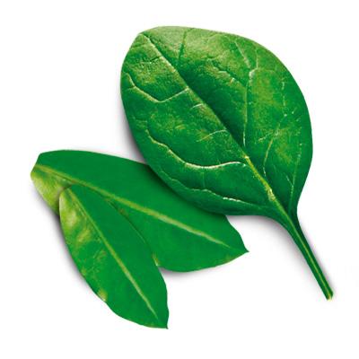 greens2